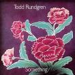 Something / Anything? (2枚組/180グラム重量盤レコード/Music On Vinyl)
