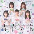 青春の花/スタートライン 【初回生産限定盤A】(+DVD)