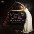I Colori Dell' ombra-cello Concertos: Gaillard(Vc)Pulcinella O