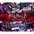 軌跡 BEST COLLECTION II <2CD+DVD(MV集)>