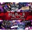 軌跡 BEST COLLECTION II <2CD+Blu-ray(MV集)>