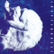 Whirlpool (180グラム重量盤レコード/Music On Vinyl)