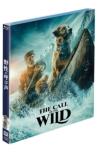 野性の呼び声 ブルーレイ+DVDセット
