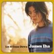 Let It Come Down【2020 レコードの日 限定盤】(アナログレコード)