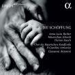 Die Schopfung: Antonini / Il Giardino Armonico A.l.richter M.schmitt Boesch