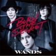 BURN THE SECRET【初回限定盤】(+DVD)