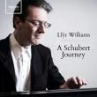 A Schubert Journey -Piano Works : Llyr Williams (8CD)