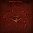 Burning Red (180グラム重量盤レコード/Music On Vinyl)