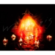 Walpurgis 【初回生産限定盤B】(CD+DVD)