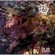 鵺【初回限定盤】<Btype>(+DVD)
