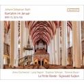 Cantata, 72, 92, 156, : S.kuijken / La Petite Bande Gschwend L.napoli Scherpe T.bauer