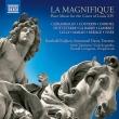 La Magnifique-flute Music For The Court Of Louis 14: B.kuijken Immanuel Davis(Fl)Etc