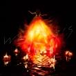 Walpurgis 【完全生産限定盤】(2枚組アナログレコード)