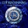 Blues Album (ブルーヴァイナル仕様/2枚組180グラム重量盤レコード)