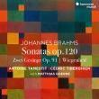 ヴィオラ・ソナタ第1番、第2番、2つの歌、他 アントワン・タメスティ、セドリック・ティベルギアン、マティアス・ゲルネ(日本語解説付)