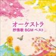 オーケストラ抒情歌bgm: 南安雄 / 日本po ベスト キング ベスト セレクト ライブラリー 2021