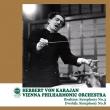 ブラームス:交響曲第3番、ドヴォルザーク:交響曲第8番 ヘルベルト・フォン・カラヤン&ウィーン・フィル(平林直哉復刻)