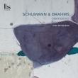 Davidsbundlertanze: Josu De Solaun(P)+brahms: Intermezzi, Pieces