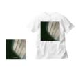アイボリー <CD+Tシャツ(Lサイズ)>