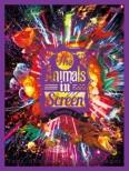 The Animals in Screen Bootleg 1
