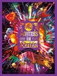 The Animals in Screen Bootleg 1 (Blu-ray)