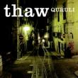 thaw【2021 RECORD STORE DAY 限定盤】(カラーヴァイナル仕様/2枚組アナログレコード)