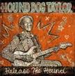 Release The Hound この猟犬スライドに憑き -未発表ライヴ 【国内盤/帯付】(アナログレコード)