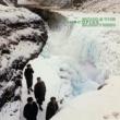 Porcupine (180グラム重量盤レコード)
