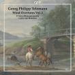 Wind Overtures Vol.2: Heerden / L' orfeo Blaserensemble