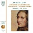 Complete Piano Works Vol.59-schubert Transcriptions: Dominic Cheli