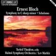交響曲嬰ハ短調、シェロモ レフ・マルキス&マルメ交響楽団、トーレイヴ・テデーン