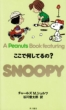 A PEANUTS BOOK FEATURING SNOOPY 22