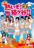 もっと熱いぞ!猫ヶ谷!!DVD-BOX I