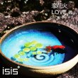 恋花火/LOVE is…