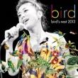 bird' s nest 2013