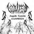 Angelic Toxicity
