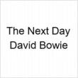 Next Day (7インチシングルレコード)