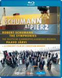 交響曲全曲 P.ヤルヴィ&ドイツ・カンマーフィル(2012)(+ドキュメンタリー)