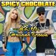 Turn It Up feat.AK-69 & Havana Brown (+DVD)