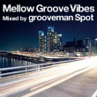 Mellow Groove Vibes