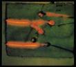 Miroslav Vitous Group (アナログレコード)