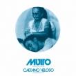 Muito +2