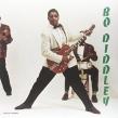 Bo Diddley (180グラム重量盤)