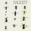 Barrett (アナログレコード)