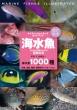 海水魚 ひと目で特徴がわかる図解付き 1000種+幼魚、成魚、雌雄、婚姻色のバリエーション ネイチャーウォッチングガイドブック