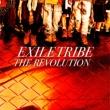 THE REVOLUTION (+DVD)