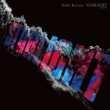 STARLIGHT (アナログレコード)