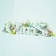 ClariS 〜SINGLE BEST 1st〜【初回生産限定盤】(CD +全シングルのMusic Video収録Blu-ray付)