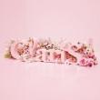 ClariS 〜SINGLE BEST 1st〜【通常盤】(CDのみ)