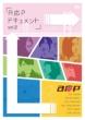 A応Pドキュメント Vol.2 DVD